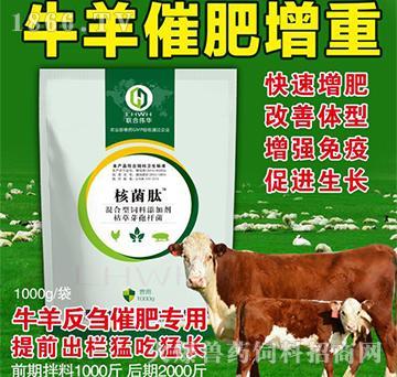 核菌肽牛羊专用-只催肥不吹牛