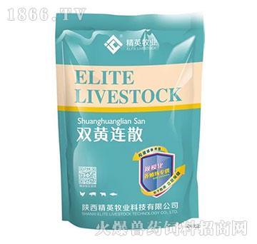 双黄连散-清热解毒、补中益气、增强免疫、疏风解表