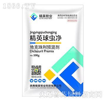 精英球虫净―用于球虫病防治,安全、无残留!