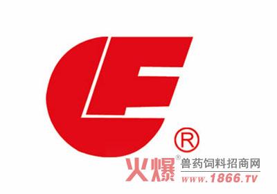 飞龙logo素材