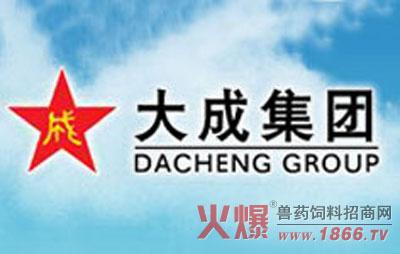 大成集团公司logo