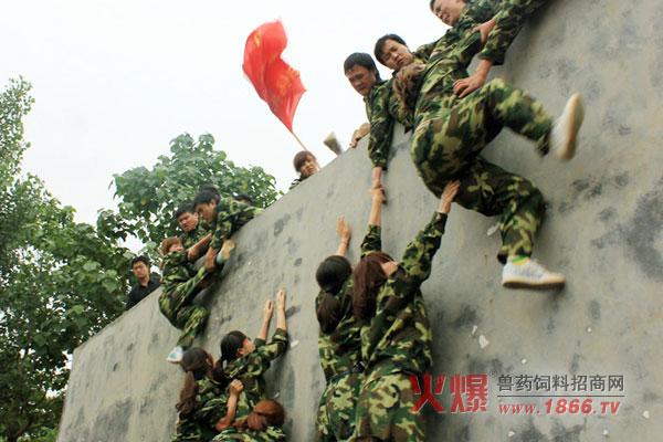 拓展训练培训感想_记郑州火爆网络拓展训练营