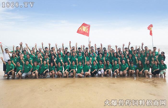 火爆团队,海岛之旅