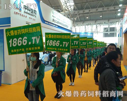 2017世界猪业博览会,精彩无限!1866.TV宣传绿动全城!