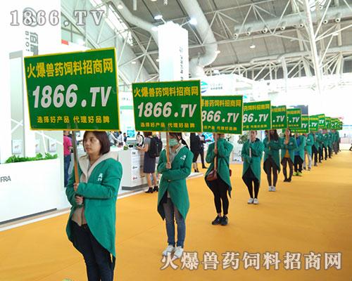 坚持到底,永不放弃,1866.TV在李曼中国养猪大会积极宣传!