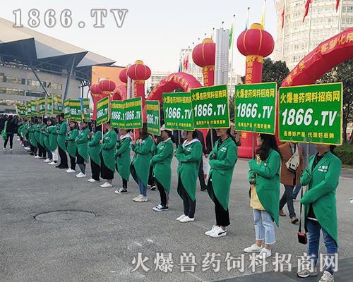 火爆宣传,勇往直前!2018世界猪业博览会精彩无限!