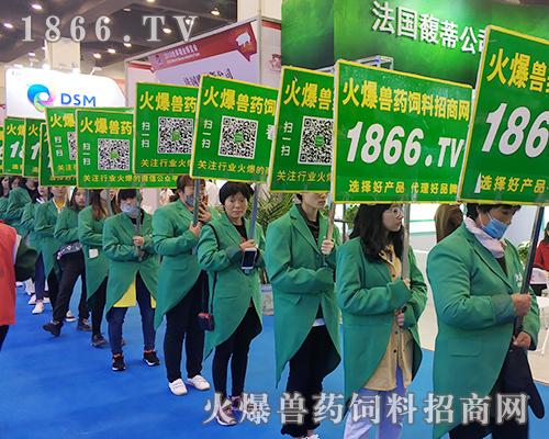 2018李曼养猪大会,火爆兽药饲料网全力以赴做推广