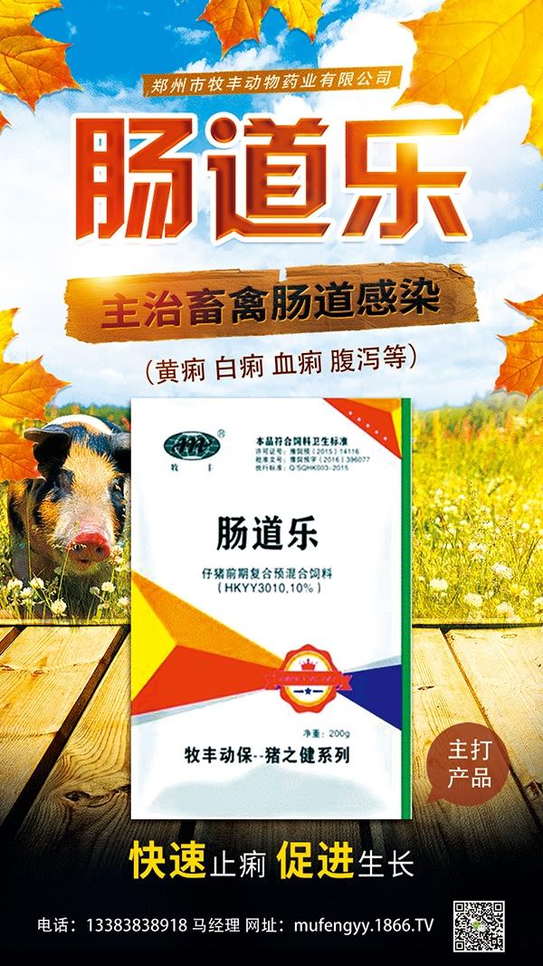 郑州市牧丰动物药业有限公司-肠道乐
