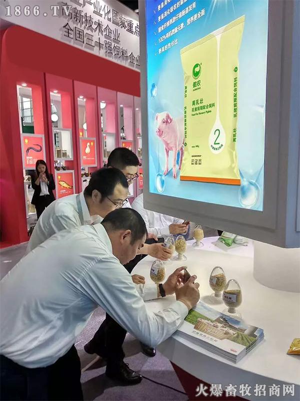 傲农仔猪营养三阶段产品,吸引众多参展者驻足观看