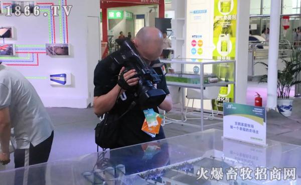 湖北电视台记者来到京鹏展位现场取景拍摄