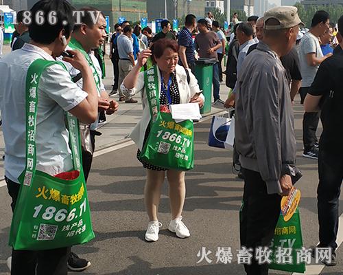 2019全国畜牧会,火爆团队气宇轩昂、无往不利!
