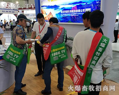 铮铮铁骨火爆人,2019全国畜牧会风采独特!