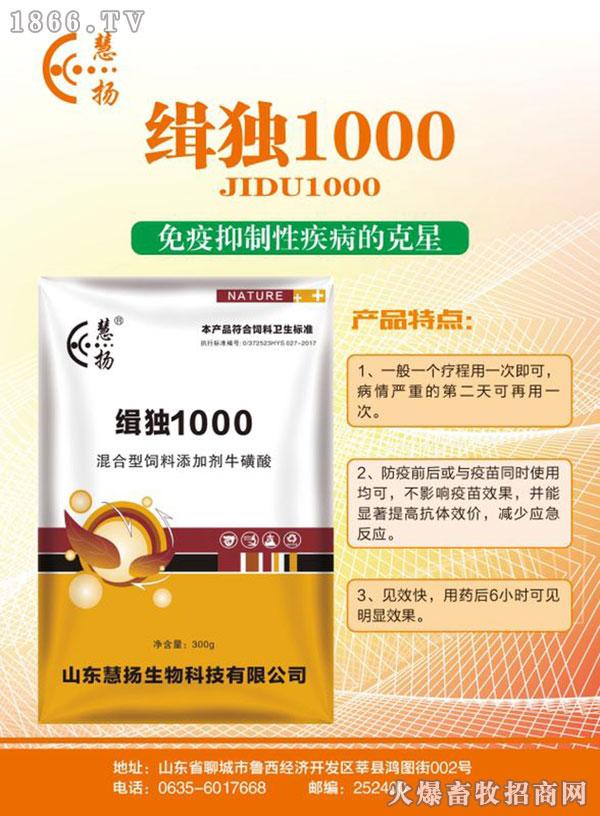 缉独1000-600