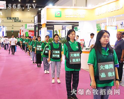 2019中原畜牧业交易博览会火爆现场,等你来看!