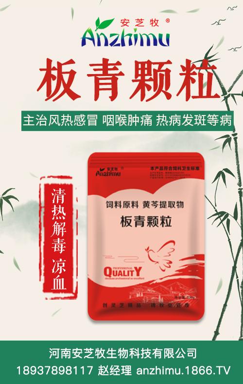 河南安芝牧生物科技有限公司-板青颗粒
