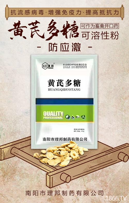 黄芪多糖可溶性粉