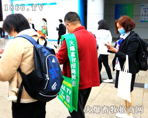 2020李曼养猪大会,绘火爆绿色璀璨,展火爆人光辉!