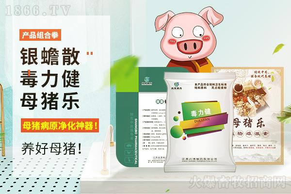 产品组合拳|母猪病原净化神器!