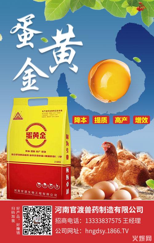 蛋鸡产蛋期该怎么管理?