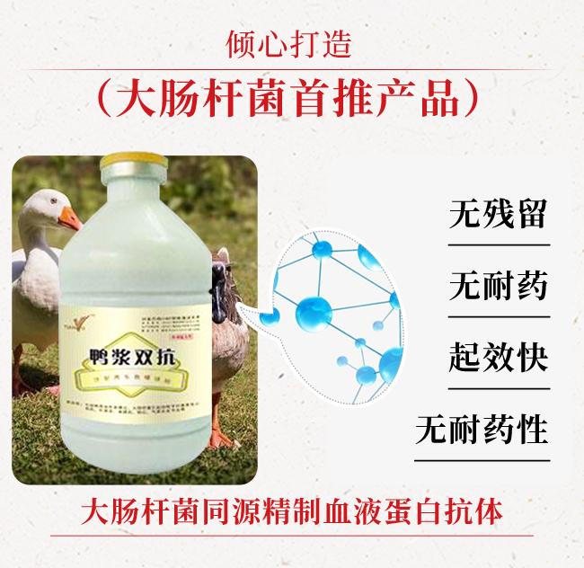 鸭浆双抗-治疗鸭浆膜炎、大肠杆菌