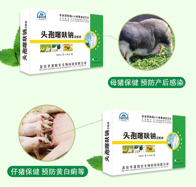 头孢噻呋钠注射液-用于各类病原体感染引起的疾病