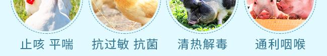 咳喘清肺宁-505979_10