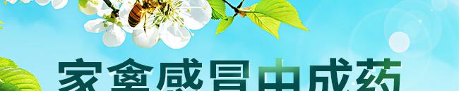 众信金刚-502964_02