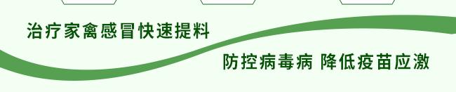 众信金刚-502964_10
