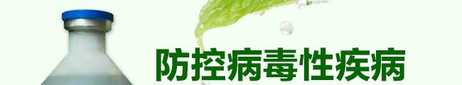 众信金刚-502964_16
