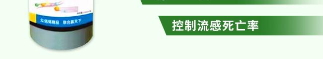 众信金刚-502964_18