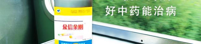 众信金刚-502964_21