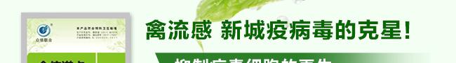 众信诺卡-502966_15