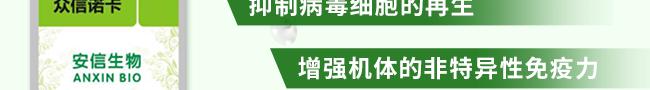 众信诺卡-502966_16