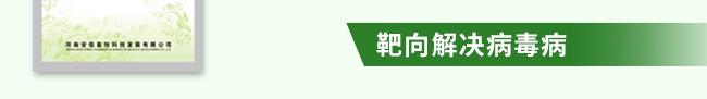 众信诺卡-502966_17