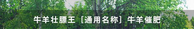 牛羊壮膘王(牛羊催肥)-324775_19