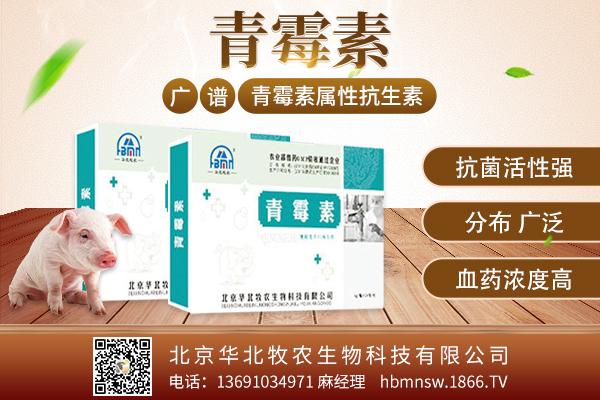 北京华北牧农生物科技有限公司-青霉素-7月17日