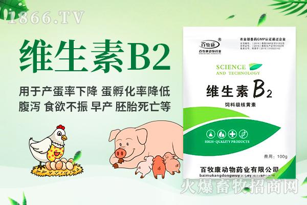 河南省普鑫(百牧康)生物科技有限公司-维生素B2