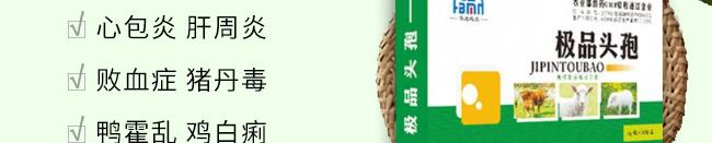 头孢-主治禽类顽固性大肠杆菌、巴氏杆菌、沙门氏菌
