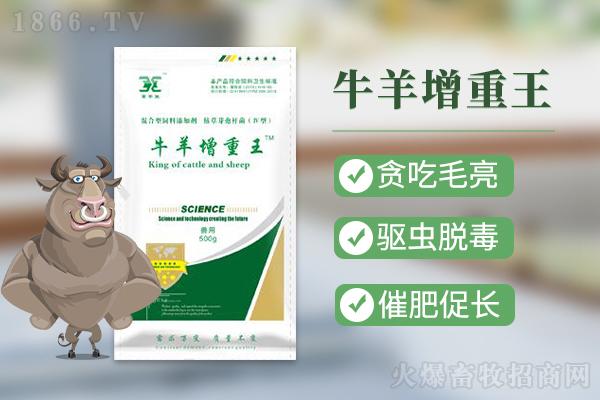河南昌牧生物科技有限公司(畜安堂)-牛羊增重王-1月13日