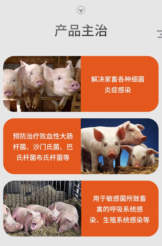 菌无忧-禽大肠杆菌、浆膜炎、气囊炎;家畜各种细菌炎症感染