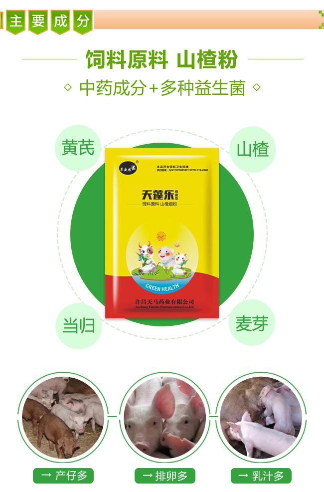 天蓬乐母猪型