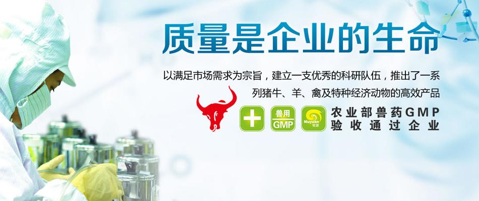 河南正茂生物科技有限公司