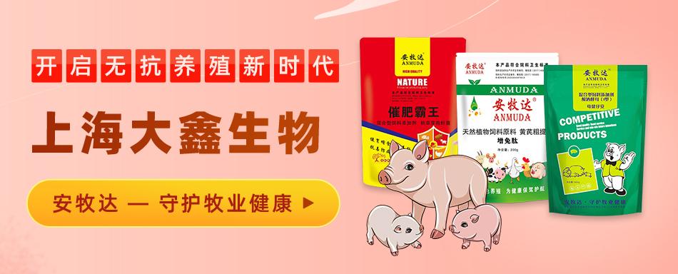 上海大鑫生物科技有限公司