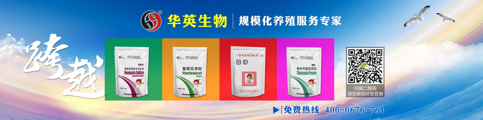 潍坊华英生物科技有限公司
