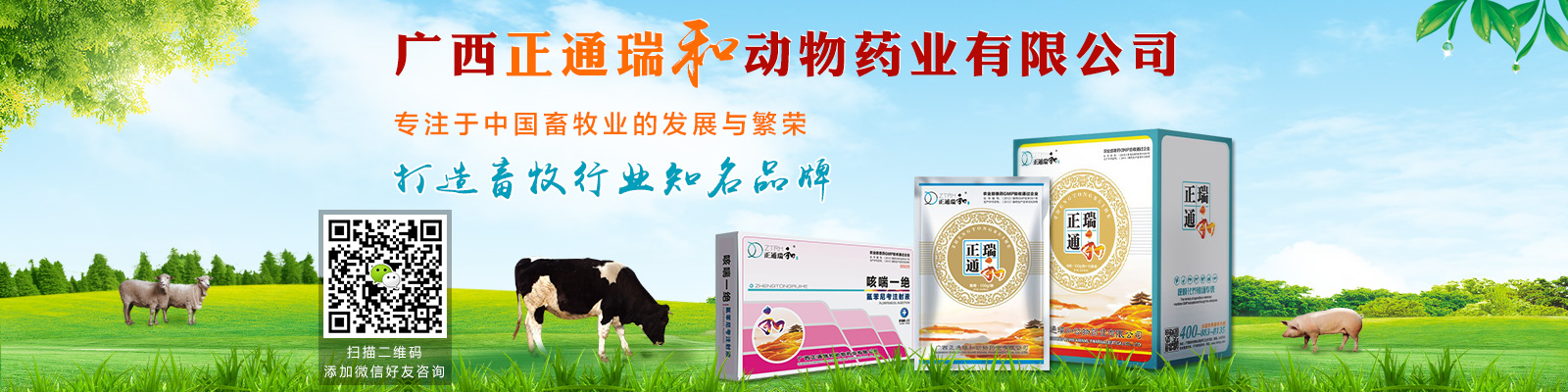 广西正通瑞和动物药业有限公司