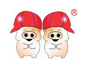 双胞胎(集团)股份有限公司