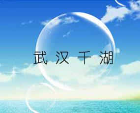 武汉千湖生物工程有限责任公司
