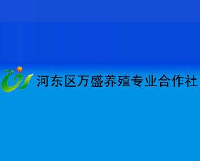 河东区万盛养殖专业合作社