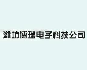 潍坊博瑞电子科技公司