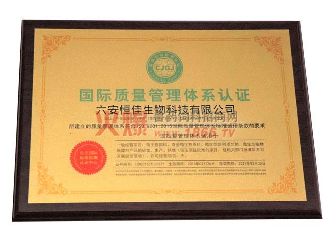 国际质量管理体系认证证书-六安恒佳生物科技有限公司